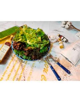 『綠谷沙拉生菜園』沙拉花束500g+AT&T精選油&醋100ml組(免運,限宅配出貨)