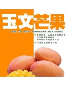 『台灣產地直送』玉文芒果10斤箱( 每箱約3-5顆)含箱重(限宅配到府)