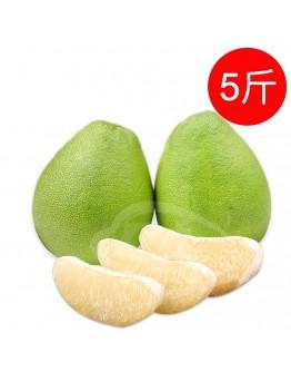 40年麻豆文旦5斤禮盒(約5-7顆/盒)-免運(限宅配出貨)