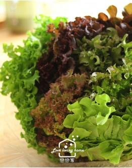 預購『綠谷沙拉生菜園』沙拉花束500g-預計7/5出貨(免運,限宅配出貨)